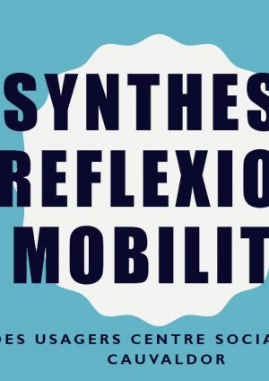 Comité des usagers – Réflexion sur la mobilité (synthèse)